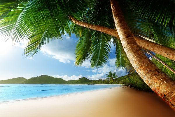 Beach Scene_shutterstock_117596929_600
