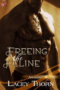 Freeing_the_Feline