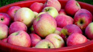 Le-proprieta-e-i-benefici-delle-mele