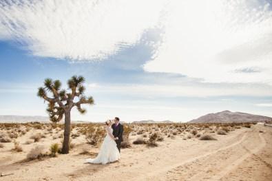 bride and groom near a joshua tree
