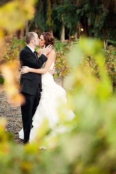kissing through the vineyard leaves
