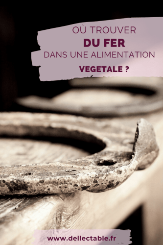 Les aliments et végétaux riches en fer