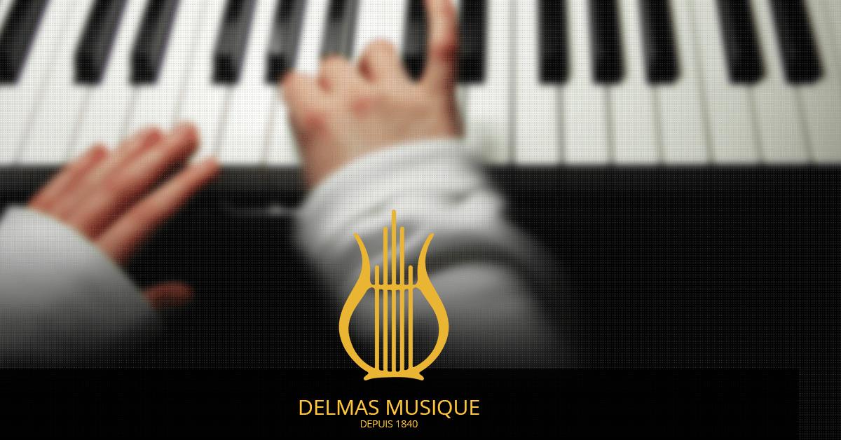 l histoire de l entreprise delmas musique