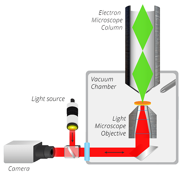 a well labelled diagram of microscope auto rod controls wiring what is correlative light and electron microscopy schematic the secom