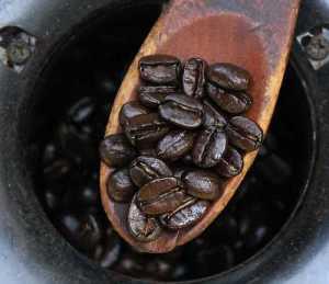 Středně pražená kávová zrnka na stupeň City