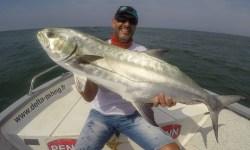 La liche un poisson exceptionnel aux leurres
