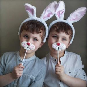 Bunny teeth tidbit: Rabbit teeth never stop growing!