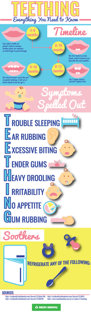 Teething Infographic-
