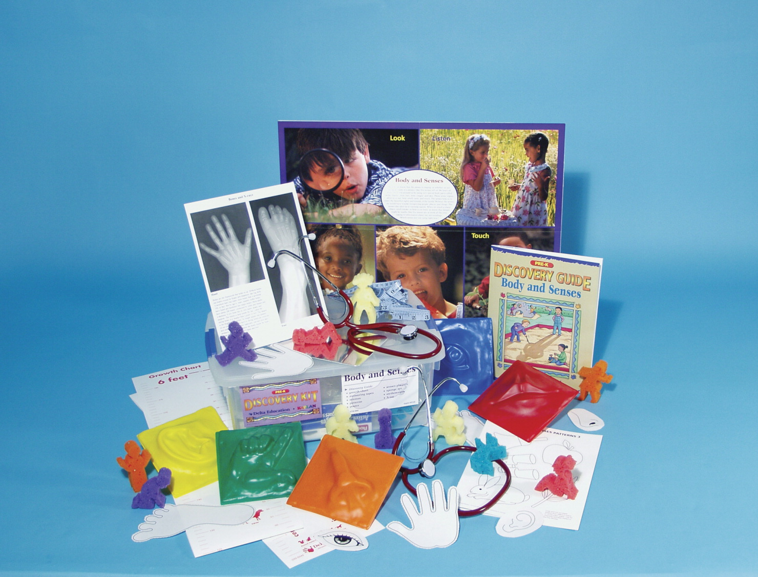 hight resolution of body and senses discovery kit