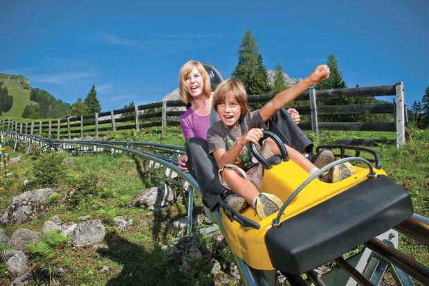 duelling-alpine-coaster-2