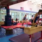 Delta Gymnastics Brisbane and Gold Coast