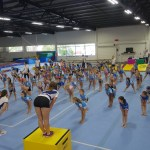 Delta Gymnastics Brisbane, Gold Coast & Barron Valley