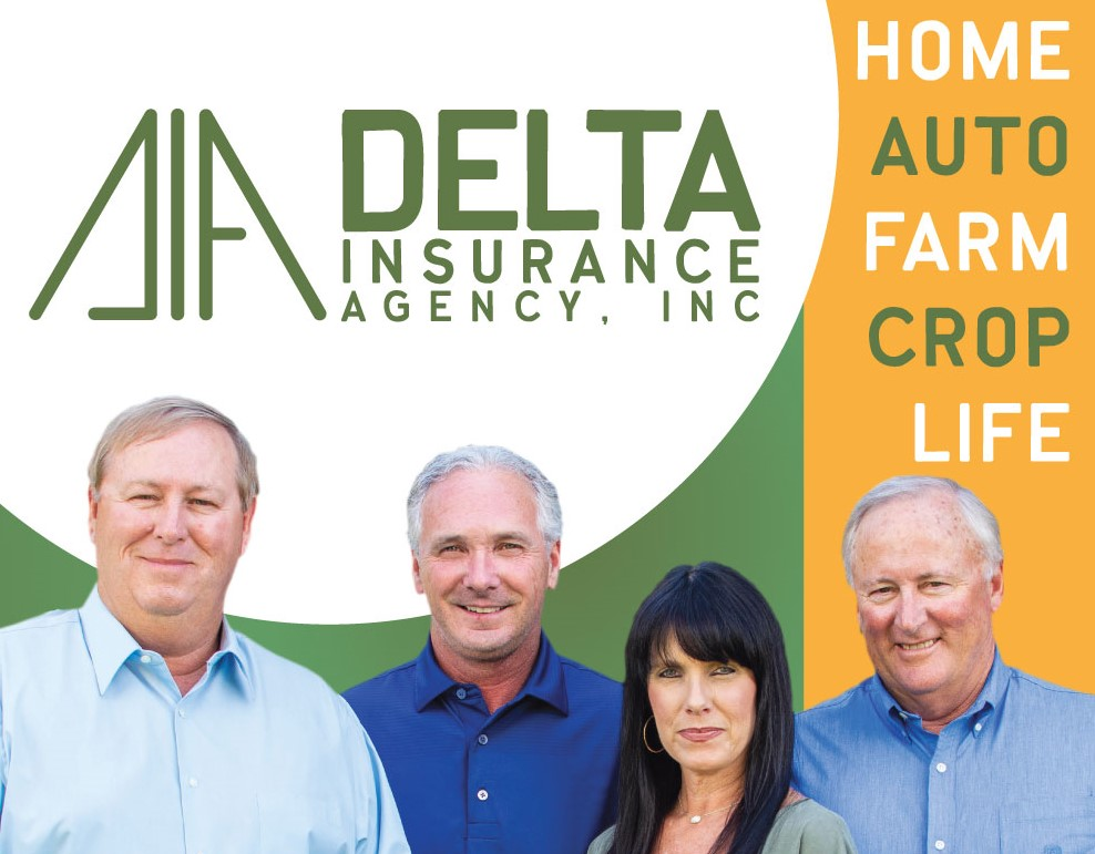 Insurance Quotes Delta Insurance Agency Inc