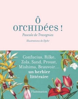 orchidées - « Dieu qui sort d'une orchidée en terre... »  (Octavio Paz)