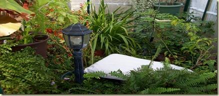 greenhouse sleepong 004