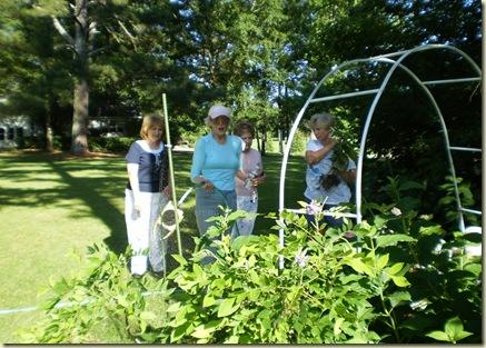 better shirley's garden