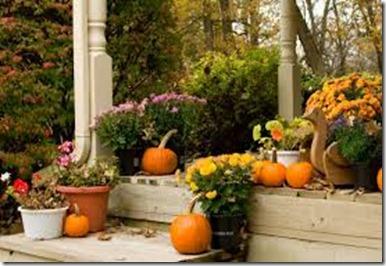 pumpkins arrive