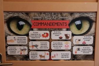 Les 10 commandements à respecter.