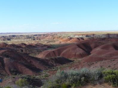 Painted Desert Arizona (11)