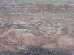 Painted Desert Arizona (14)