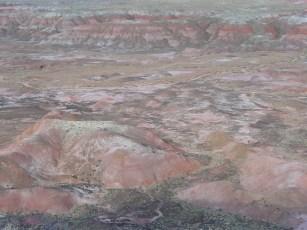 Painted Desert Arizona (14)