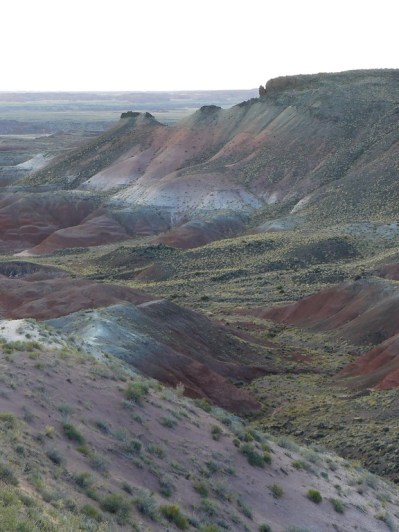 Painted Desert Arizona (18)