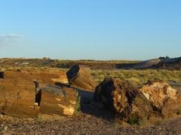 Painted Desert Arizona (5)