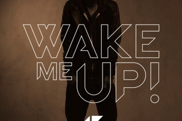 Wake Me Up - Avicii - True - Music Video