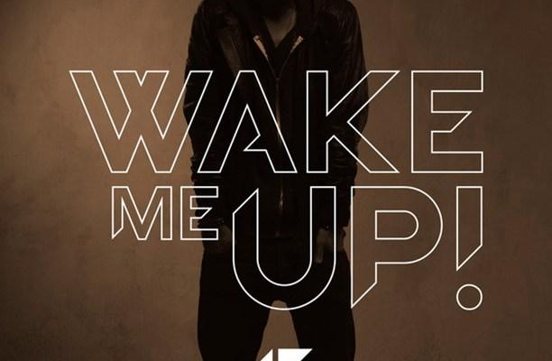 Wake Me Up - Avicii - True - Music Video