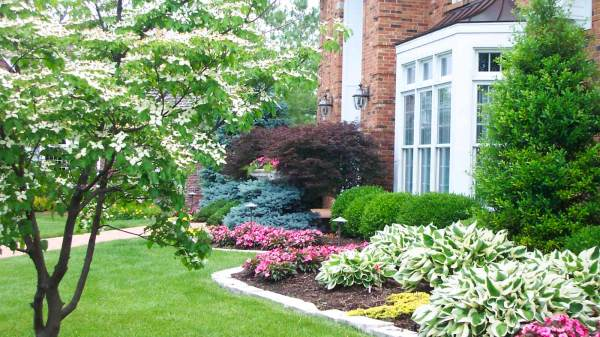 landscaping mistakes and
