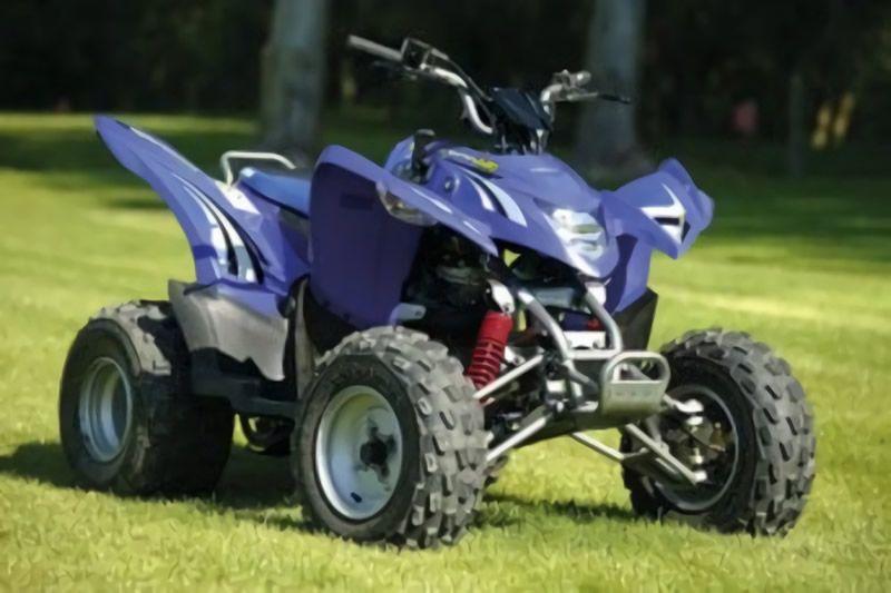 Aeon Cobra 220 Manual de reparación