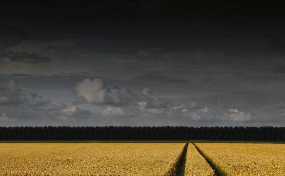 'De mooie Wieringermeer' - Foto: Kenneth Stamp