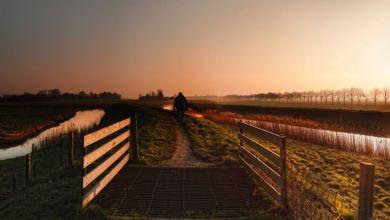 Photo of De rand van de polder door de lens van Kenneth Stamp