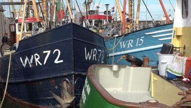 Photo of Stilleggen garnalenvloot is drama voor vissers