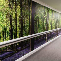 Bluebell Wood Mural