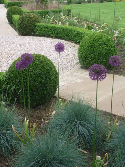 Demeter Design Garden Designer Cambridgeshire And
