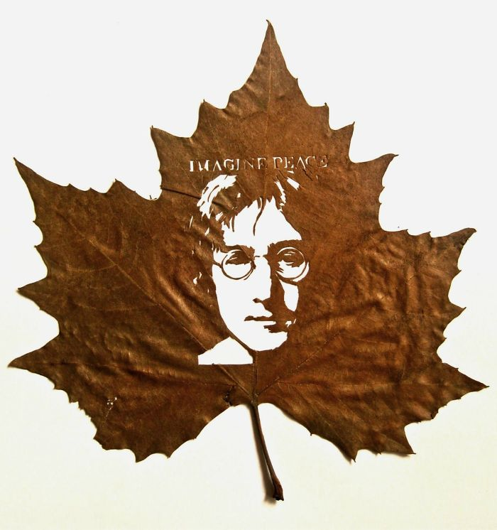 Incredibly Intricate Leaf Cuttings By Omid Asadi