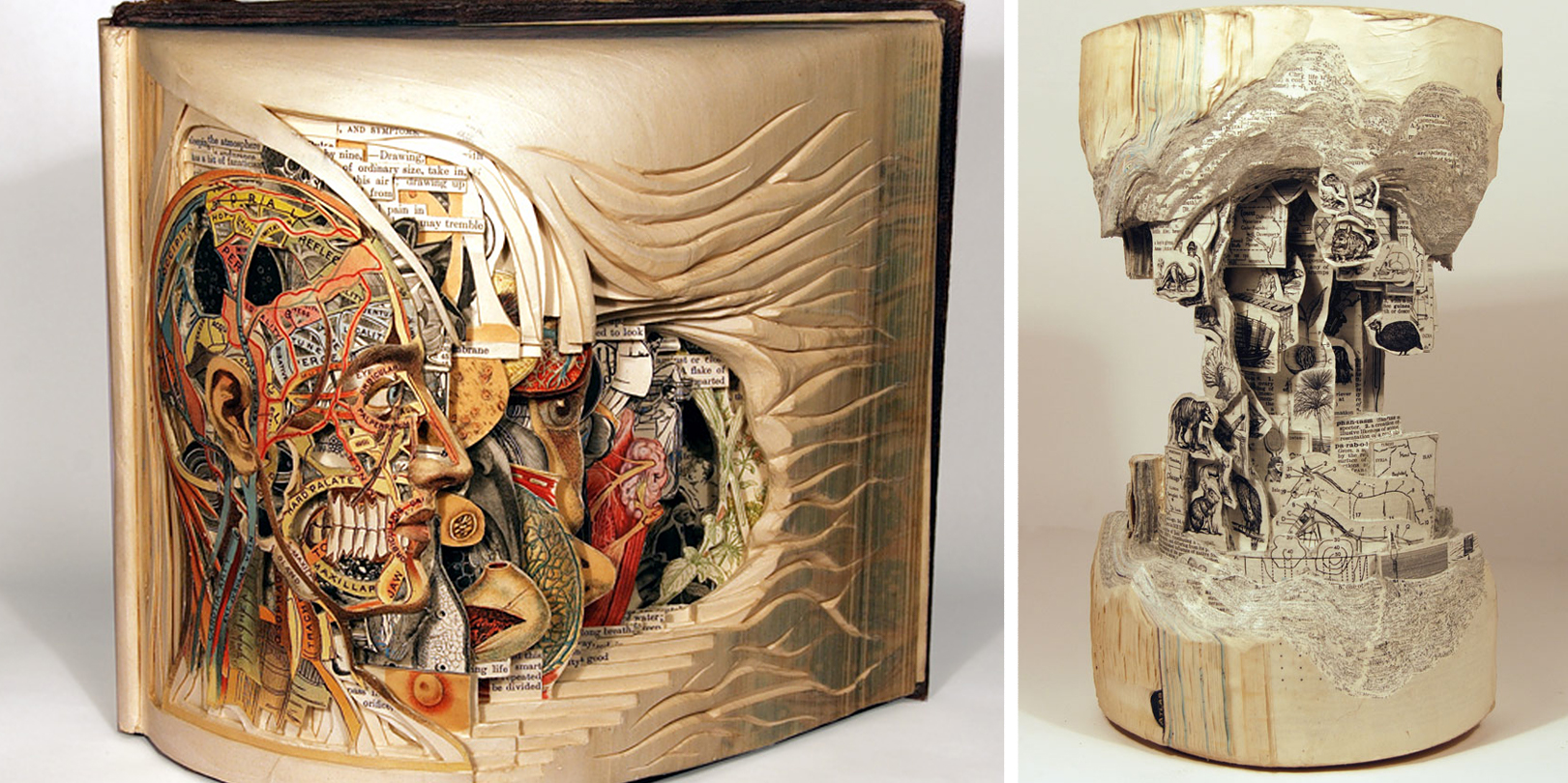 Artist Uses Surgical Tools To Carve Books Into Stunning