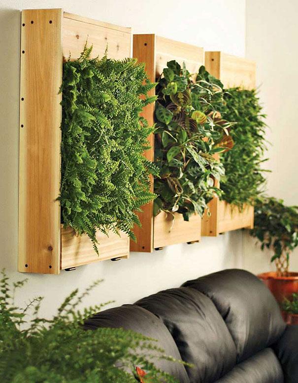 Garden Ideas And Outdoor Living Magazine Subscription Bgarden