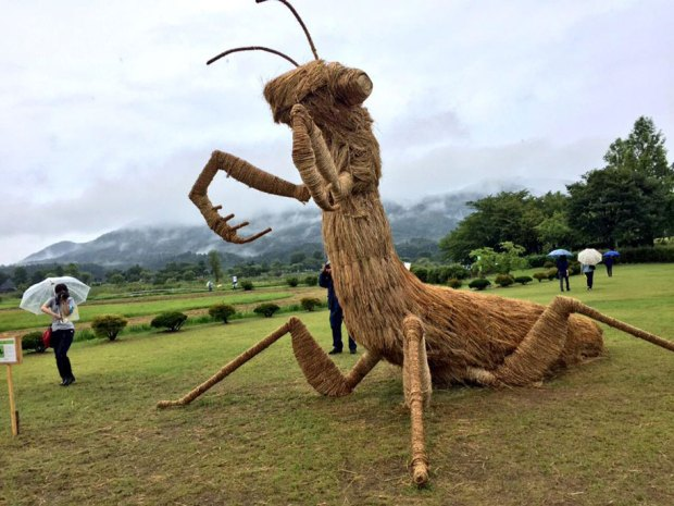 Straw Sculptures Wara Festival Niigata Japan Gigantic Praying Mantis