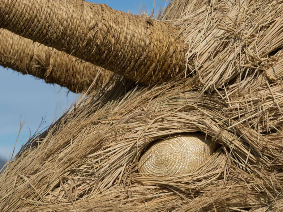 dinosaur-straw-sculptures-wara-art-festival-2015-niigata-japan-677