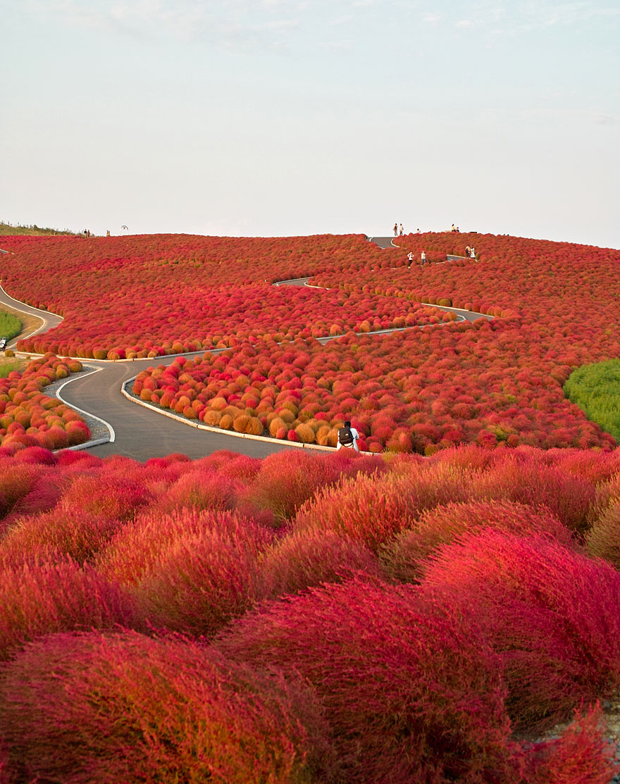 beautiful-places-tourist-attractions-japan-10