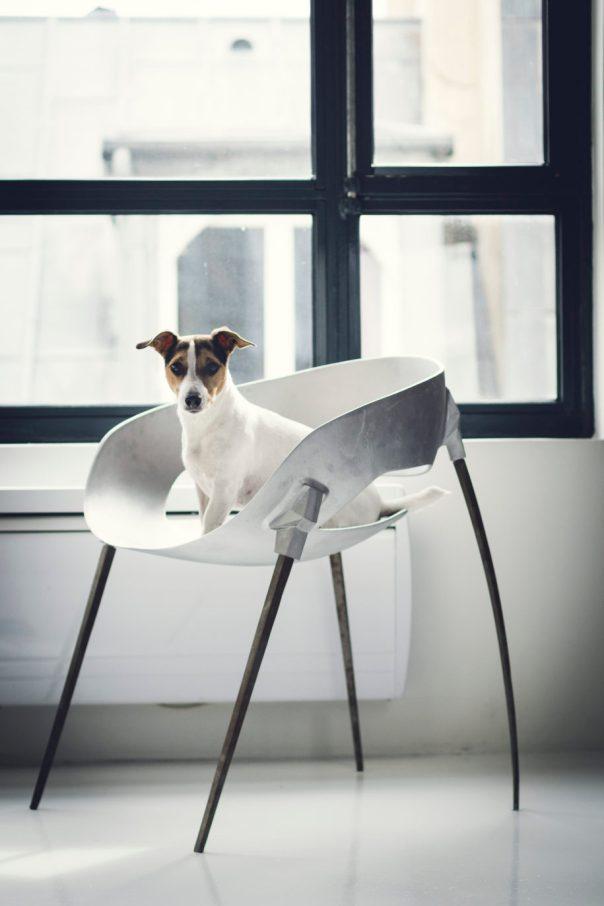 Harow Sputnik Chair