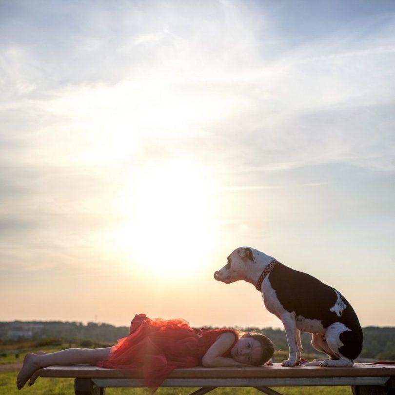 Fotos, Curiosidades, Comunicação, Jornalismo, Marketing, Propaganda, Mídia Interessante 2-2-915x915 Fotógrafa tira fotos de cães abandonados em abrigo Cotidiano Fotos e fatos  cães abandonados
