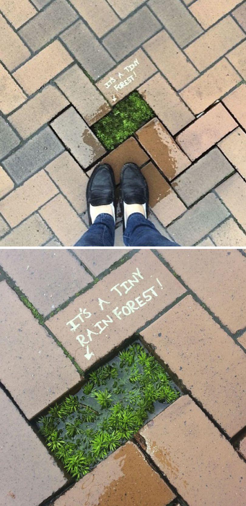 59788055efc73 creative street art positive vandalism 46 5978449d63ffe  700 - Coisas hilárias captadas em fotos