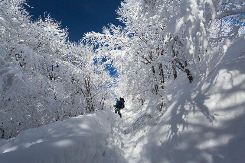 5a2e384355de1 IMG 6528TIFF 5a159682be2db  880 - Inverno no Leste Europeu: Fotógrafo captura a deslumbrante beleza da Polônia