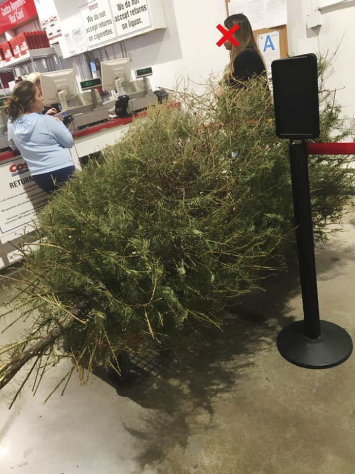 Woman Returns A Dead Christmas Tree On January 4th And