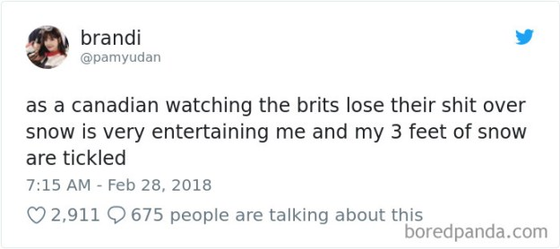 5a9d483fcd1a8-968746437071785984-png__700 Internet Reacts To Brits Panicking Over A Little Snow In A Very Creative Way Random