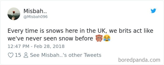 5a9d484182f83-968830119572799488-png__700 Internet Reacts To Brits Panicking Over A Little Snow In A Very Creative Way Random