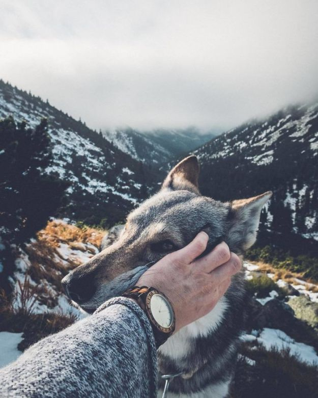 5bc58f46c8380-BbRPNCBhMqO-png__700 20+ Pictures Of A Guy Petting His Dog For Those Tired Of #FollowMeTo Instagram Pics Photography Random